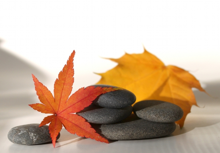 leaves-and-stones-2sm